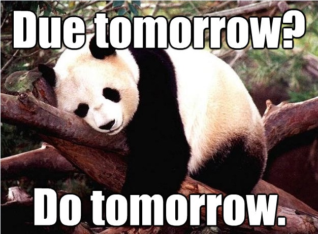Procrastination Panda