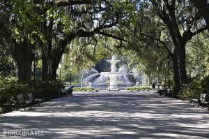 3 Savannah