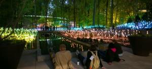 9 Botanical Garden
